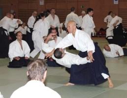 Hayato Osawa Shihan, Madrid 2014 - IMG_1799_retoc