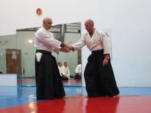 Curso Aikido AETAIKI Aikikai Alcoy Alicante - David Sánchez y Ángel L.Martínez - Comisión de Enseñanza AETAIKI - 0015