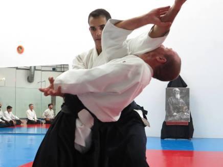 Curso Aikido AETAIKI Aikikai Alcoy Alicante - David Sánchez y Ángel L.Martínez - Comisión de Enseñanza AETAIKI - 0021