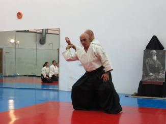 Curso Aikido AETAIKI Aikikai Alcoy Alicante - David Sánchez y Ángel L.Martínez - Comisión de Enseñanza AETAIKI - 0023
