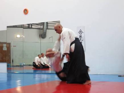 Curso Aikido AETAIKI Aikikai Alcoy Alicante - David Sánchez y Ángel L.Martínez - Comisión de Enseñanza AETAIKI - 0031