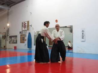 Curso Aikido AETAIKI Aikikai Alcoy Alicante - David Sánchez y Ángel L.Martínez - Comisión de Enseñanza AETAIKI - 0032
