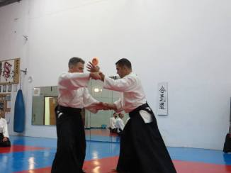 Curso Aikido AETAIKI Aikikai Alcoy Alicante - David Sánchez y Ángel L.Martínez - Comisión de Enseñanza AETAIKI - 0033