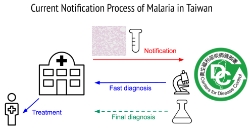 small resolution of once a patient is suspected to have malaria in a hospital his or her blood samples are sent to taiwan cdc for notification and diagnosis