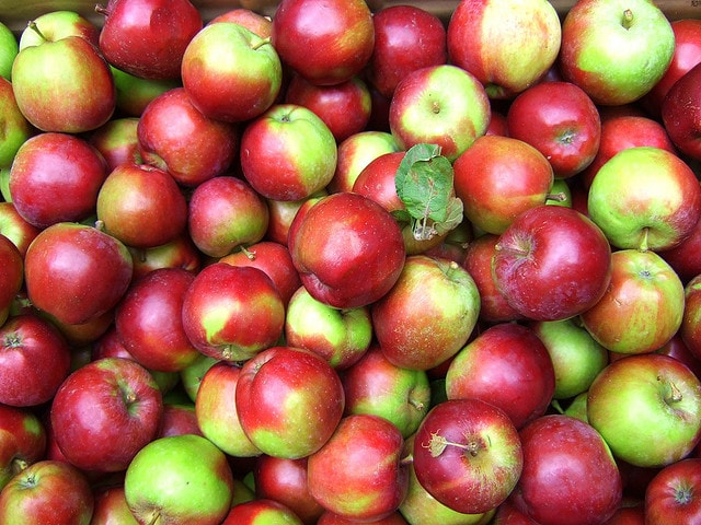 10 Delicious Apple Recipes   Aileen Cooks