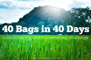 40 Bags in 40 Days Challenge – Week #1