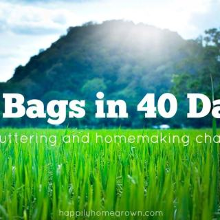 40 Bags in 40 Days Challenge and Linkup