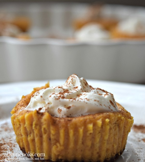 Pumpkin Cheesecake Cupcake topped with cinnamon and whipped cream.