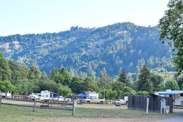 Rolling hill views from Casini Ranch campground on the Russian River.