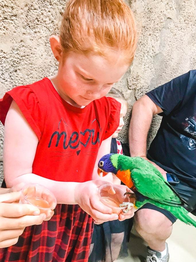 A redheaded girl holding a bird at SeaQuest.