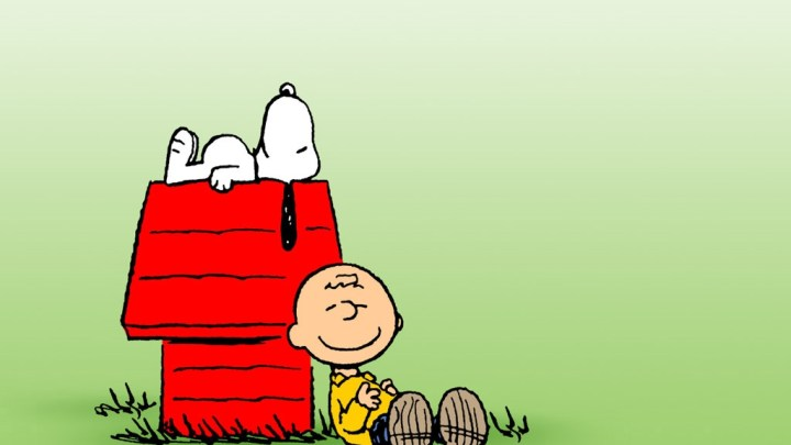 Charlie Brown ve Snoopy Filmi
