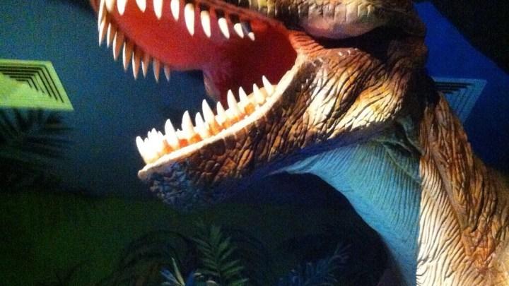 Jurassic Land Müzesi ve Eğlence