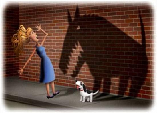 Çocuğunuz Hayvanlardan Korkarsa,Ne Yaparsınız?