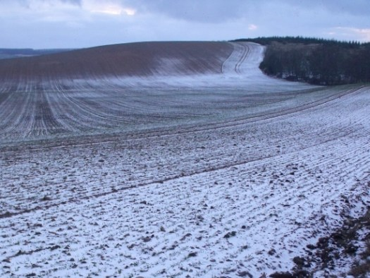 fields dusted with snow - Ailish Sinclair, author
