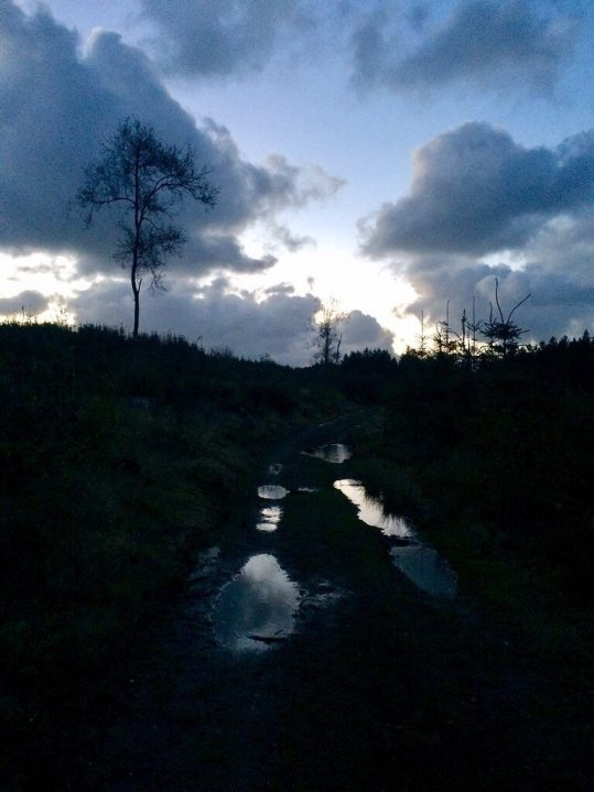 Moonlight in puddles. Ailish Sinclair | Writer