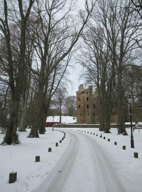 Huntly Castle peeks through the trees.