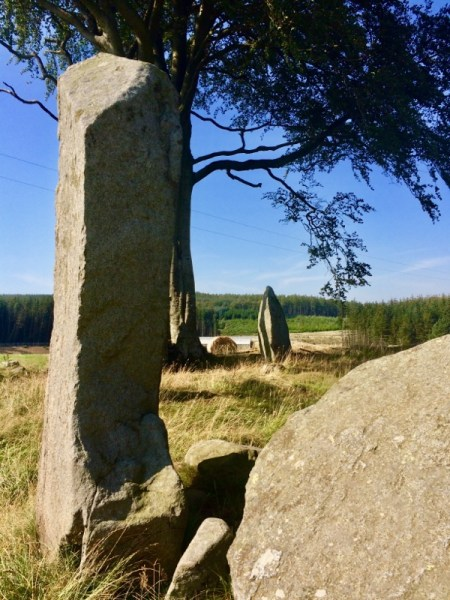 Tall stones at Tyrebagger