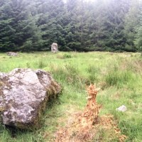 Finding Loudon Wood Stone Circle