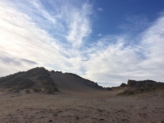 dunes silhouetted