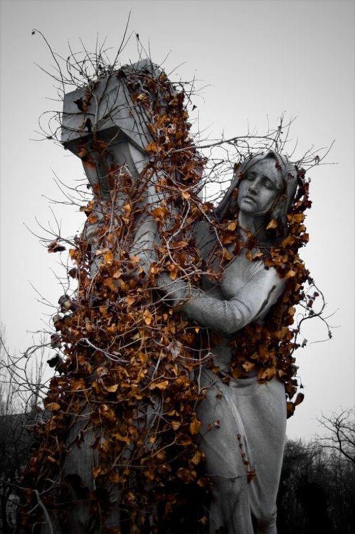 変わった墓11