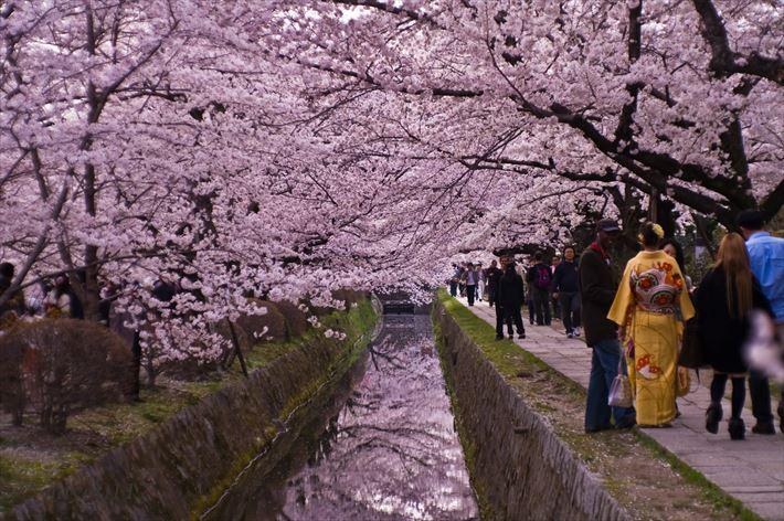 旅行者が選んだ世界で最も観光するべき10の都市ランキング(画像)