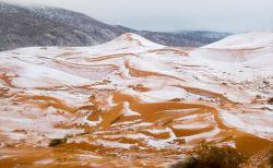 かつては豊かな土地だった。サハラ砂漠の事実8選
