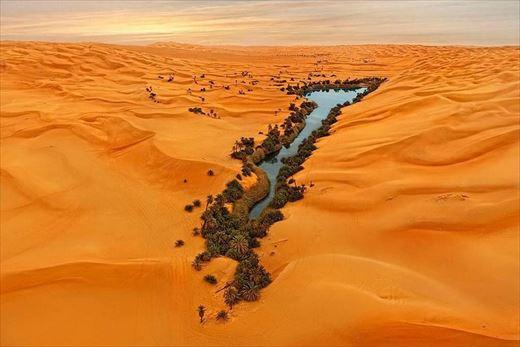 世界の美しい砂漠のオアシス(乾燥地帯)