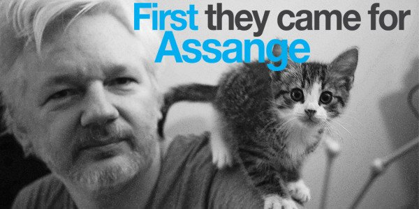 assange and cat