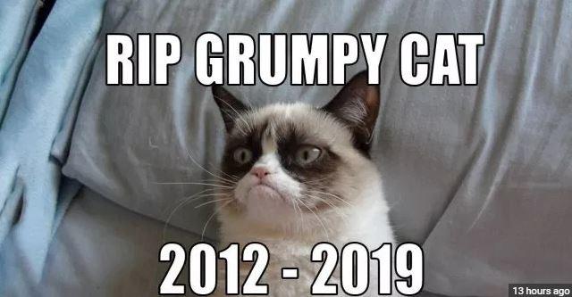 rip grumpy cat.JPG