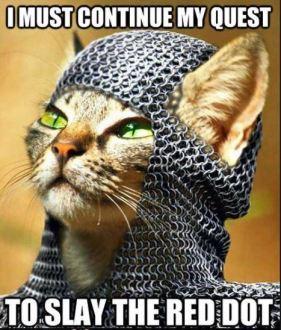 warrior kitty