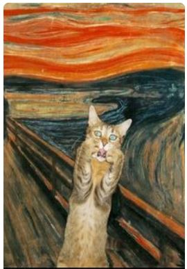 van gogh scream cat