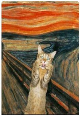 van gogh scream cat