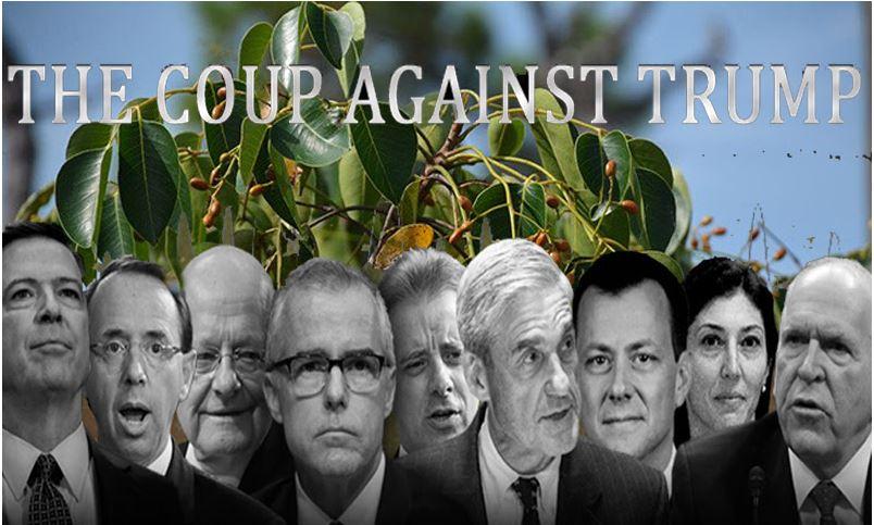coup overthrow swamp.JPG