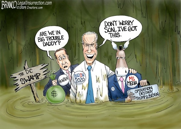 hunter joe biden swamp branco