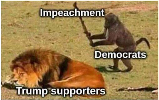 lion monkey democrat impeach.JPG