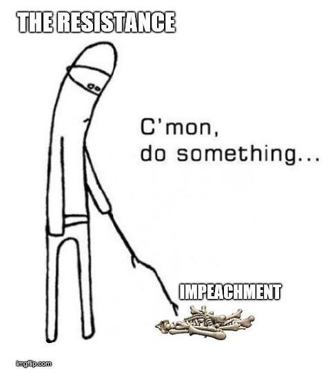resistance impeach.JPG