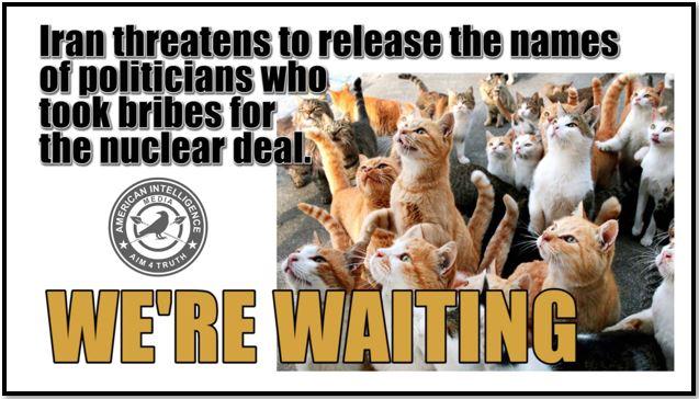 iran bribes cats nuclear.JPG