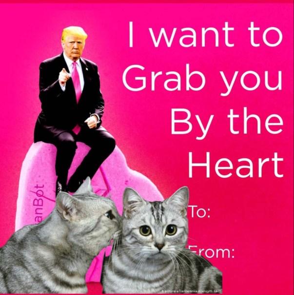 trump grab cat valentine