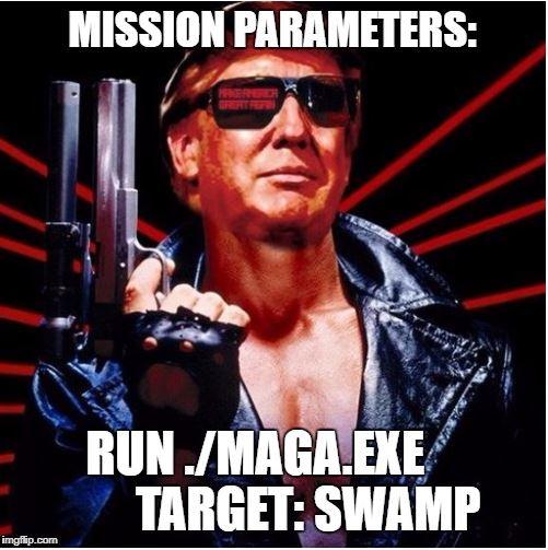 trump swamp maga