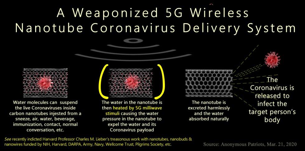 Coronavirus nanotube delivery system