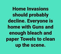 guns bleach toilet paper
