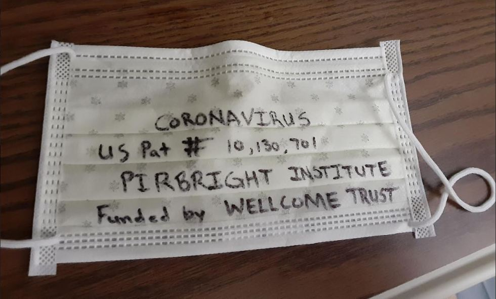 coronavirus pirbright face mask