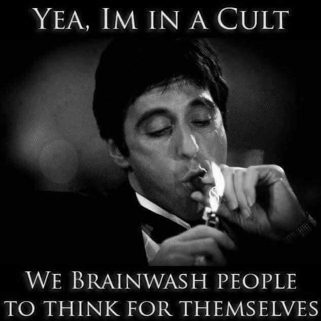 cult for thinkers