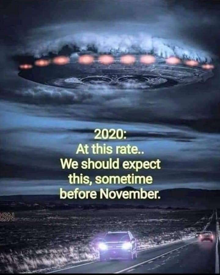 2020 spaceship