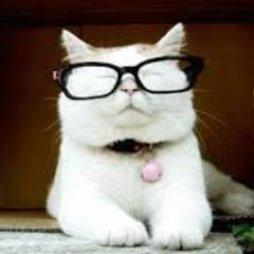 catturd