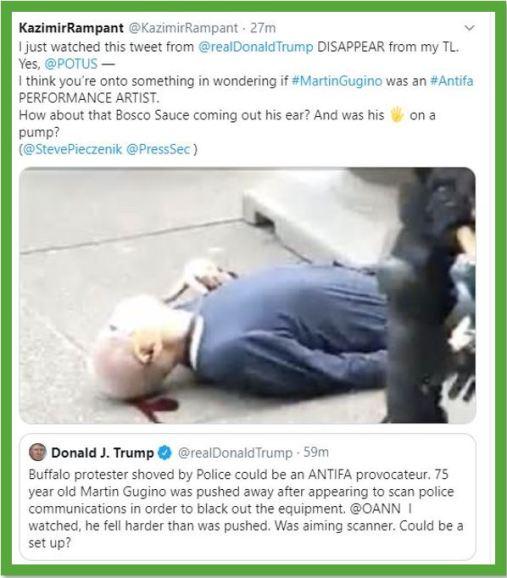 fake protestor