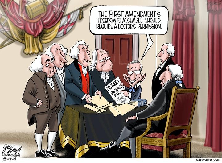 fauci constitution