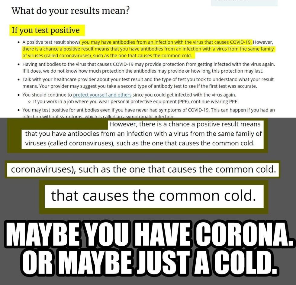 corona common cold covid