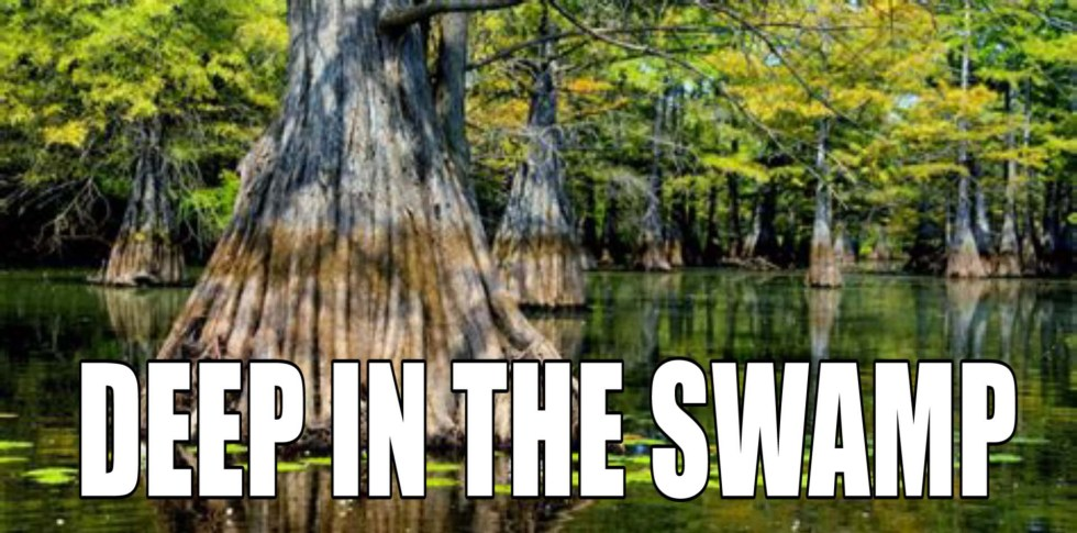deep in swamp