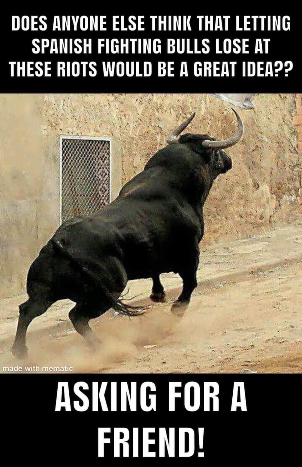 spanish bulls riot